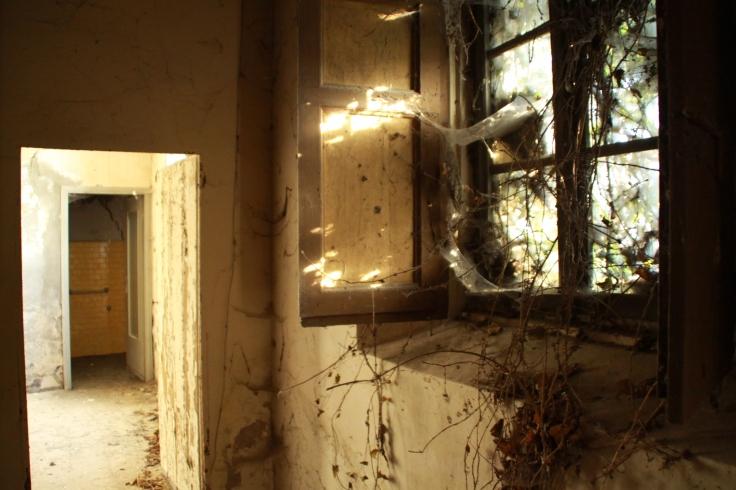 Villa Visconti di Saliceto di Cadeo: anche i muri hanno una voce